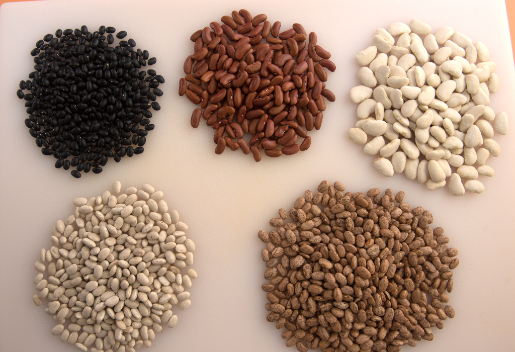 5 small piles of various types of dried beans