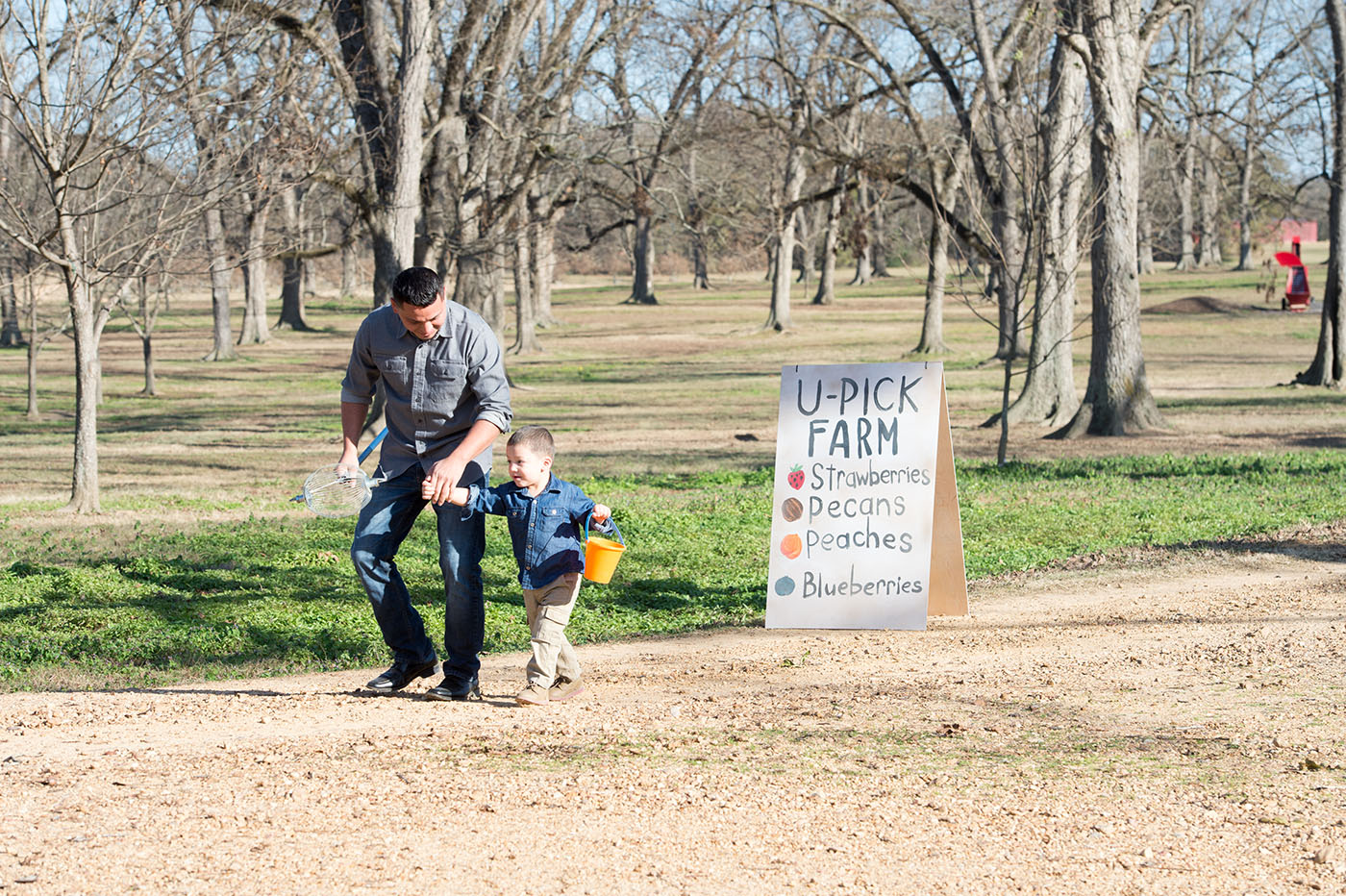 A man holding the hand of a small child who is carrying a pail among pecan trees. A U-Pick Farm sign is offering strawberries,  pecans, peaches, and blueberries.