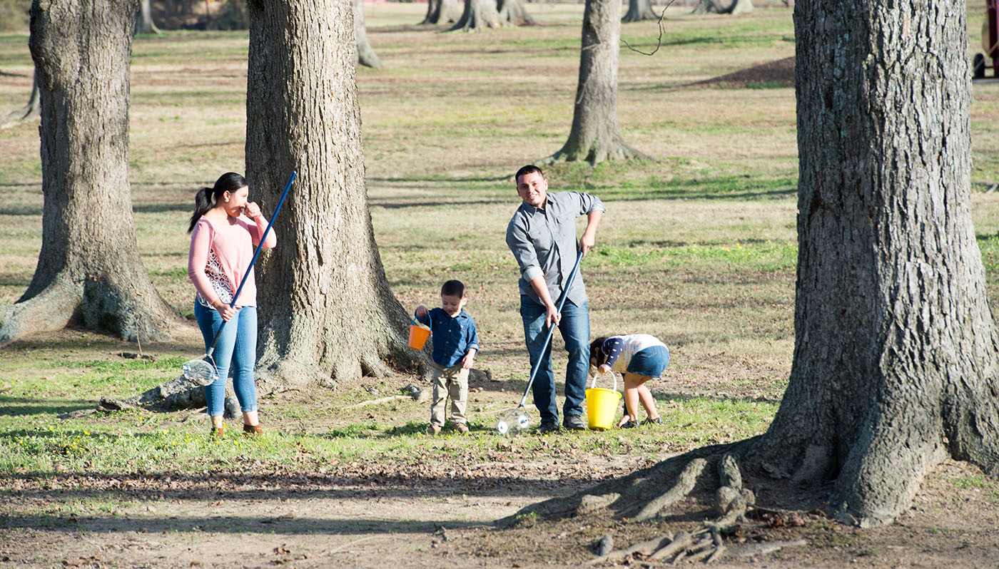 A man, woman, and two children with buckets harvest pecans at a pecan farm on a sunny day.