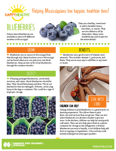 Download HappyHealthy Blueberries Newsletter (P3522)